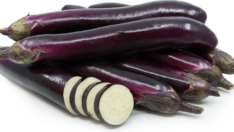 Баклажаны король севера f1: описание сорта, выращивание рассады, особенности культивирования в теплице и открытом грунте, подкормки, сбор урожая