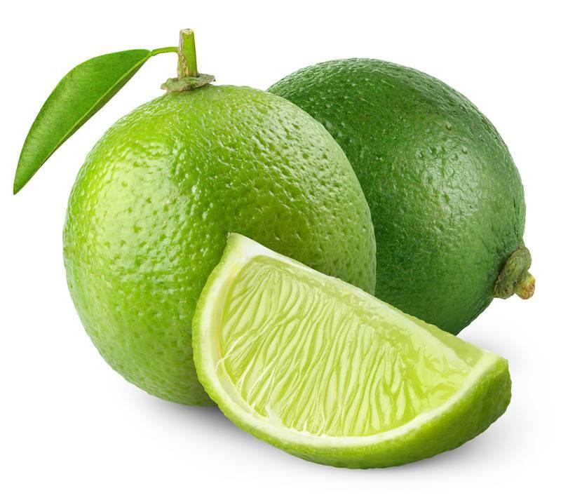 Лимон — польза и вред, состав, калорийность, содержание полезных веществ. как вырастить лимон в домашних условиях, рецепты приготовления блюд
