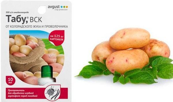 Табу – надежная защита картофельных грядок от колорадского жука