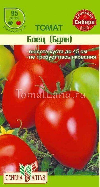 Сорт томата вова путин: описание и фото