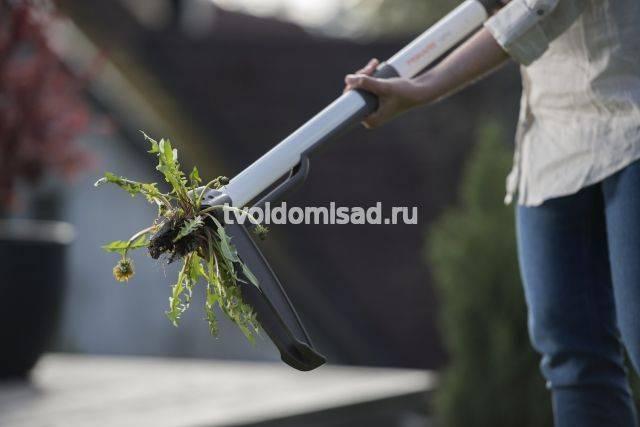 Приспособление для удаления сорняков с корнями, выбираем нужный инструмент