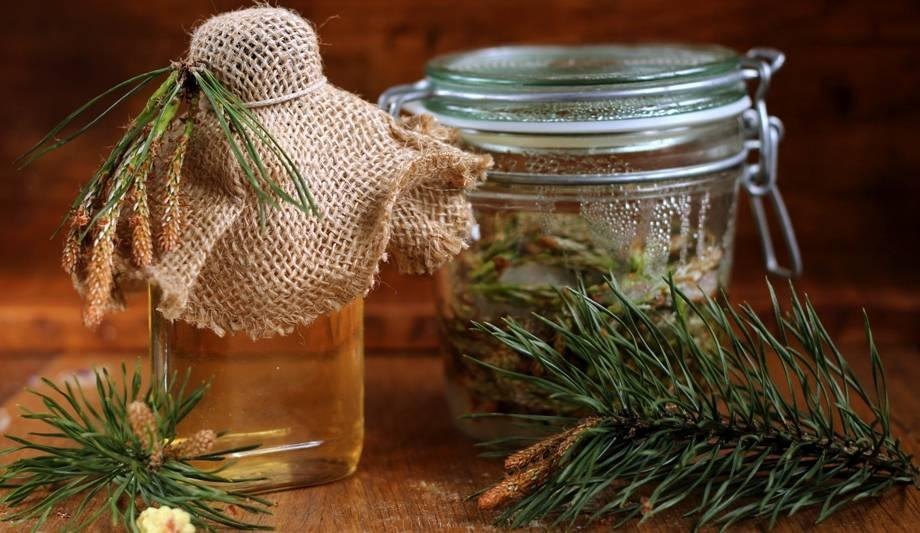 Лечение сосудов настойкой из сосновых шишек