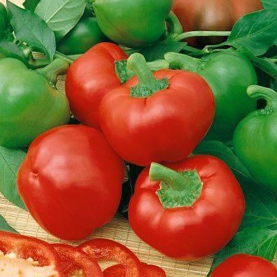 Французский сорт с сладостными нотками — томат корнабель f1 (дульче): характеристика и описание