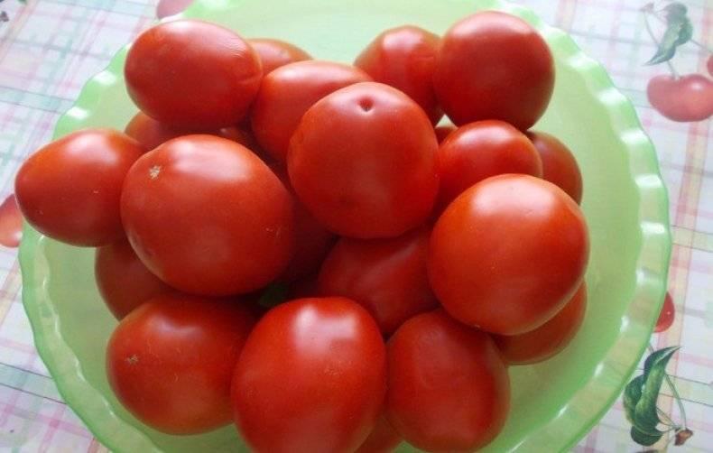 Земляк — сибирский сорт томатов