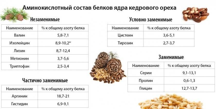 Чудодейственная польза кедровых орехов для мужчин и их потенции