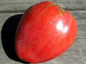 Характеристика томатов сорта данко