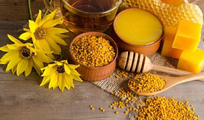 О продуктах пчеловодства и их применении, что производят пчелы кроме меда