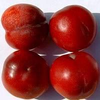 Описание слив сорта красномясая, отзывы и уход за саженцем