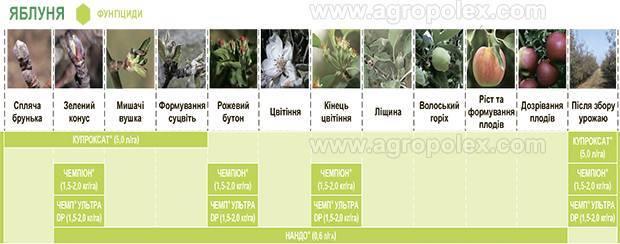 Фунгицид купроксат - инструкция по применению, дозировки для разных растений