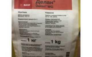 Состав и инструкция по применению фунгицида алирин-б, дозировка и аналоги