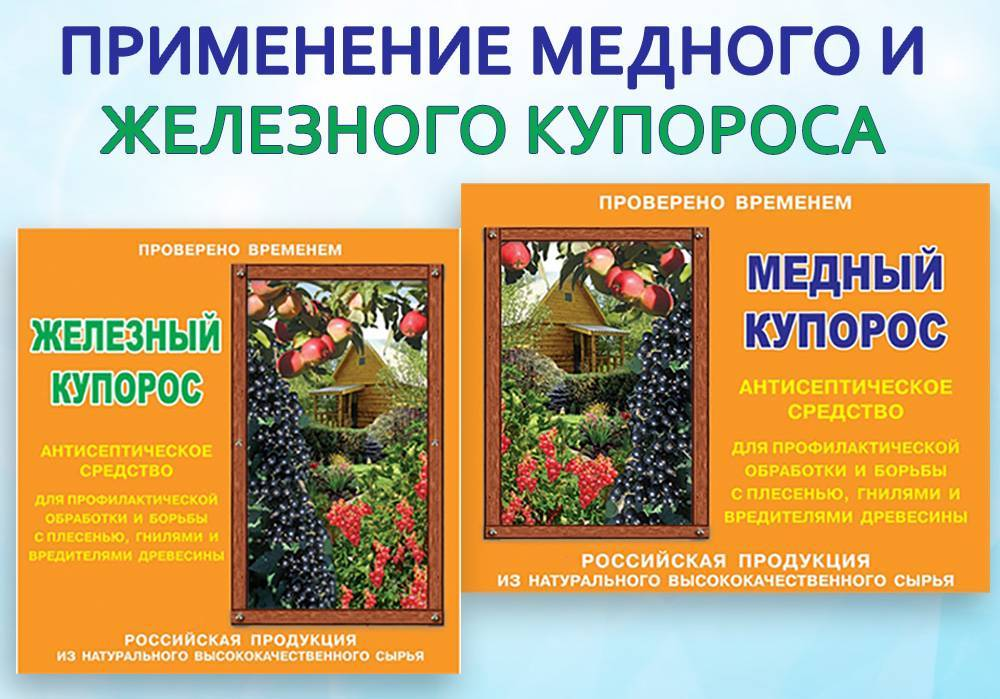 Применение мочевины для обработки смородины весной