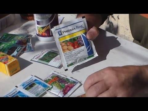 Фунгицид курзат инструкция по применению на помидорах клубнике огурцах