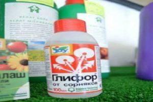 «граунд» от сорняков: отзывы и инструкция по применению препарата
