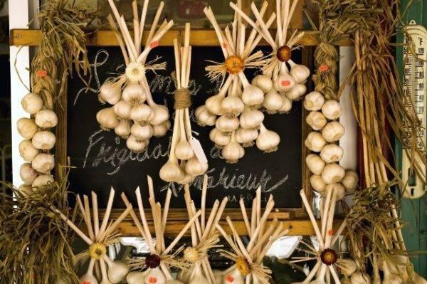 Хранение чеснока в стеклянных банках с солью или мукой. как сохранить чеснок до нового урожая