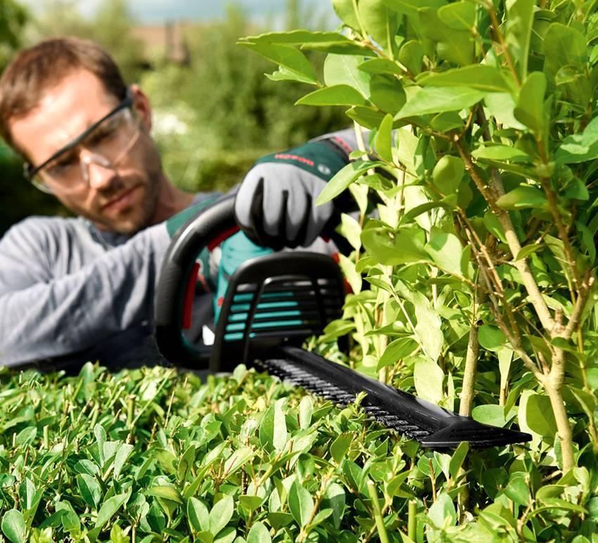 Кусторезы – обзор и рейтинг лучших устройств 2020 года. оптимальная садовая техника и рекомендации по ее применению