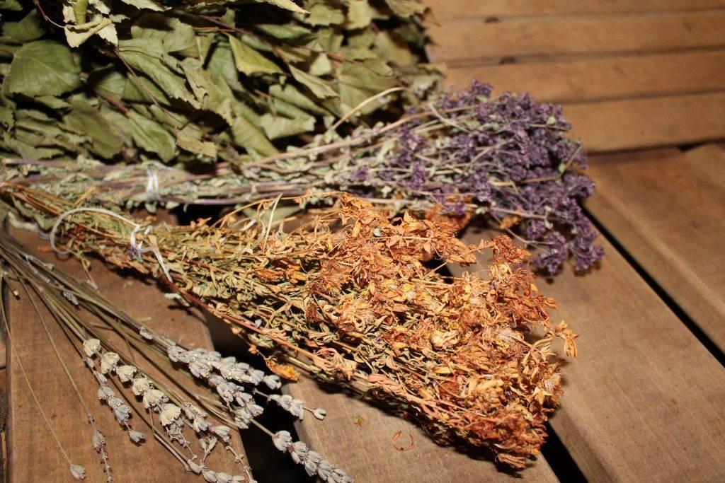 Веник из крапивы для бани - заготовка, сушка, применение!