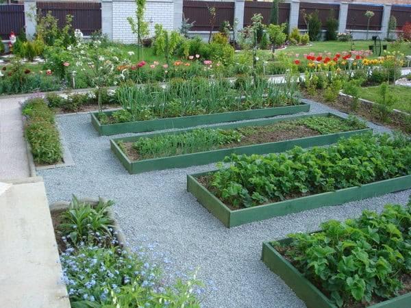 Дорожки в огороде – роскошь или средство передвижения?