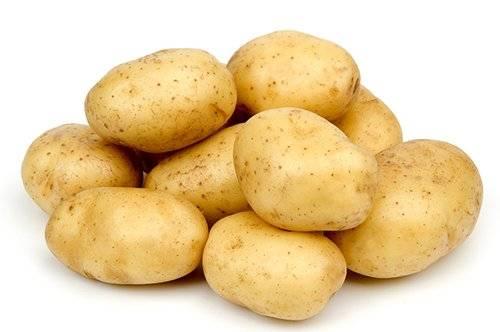 Картофель «удача»: характеристика и описание сорта, выращивание, отзывы