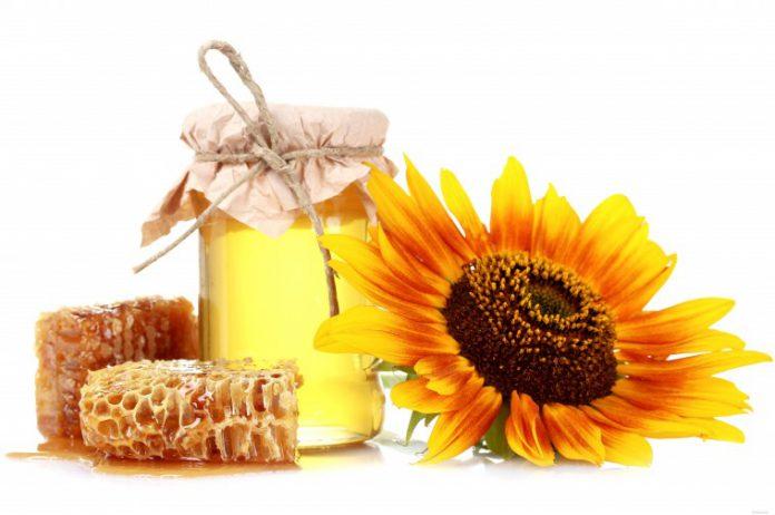 Мед подсолнечника: полезные свойства и противопоказания, применение