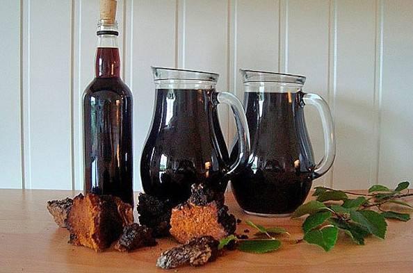 Самогон на чаге: рецепты приготовления, правила применения, отзывы