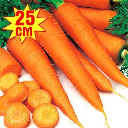 Морковь «королева осени»: описание сорта, фото, отзывы