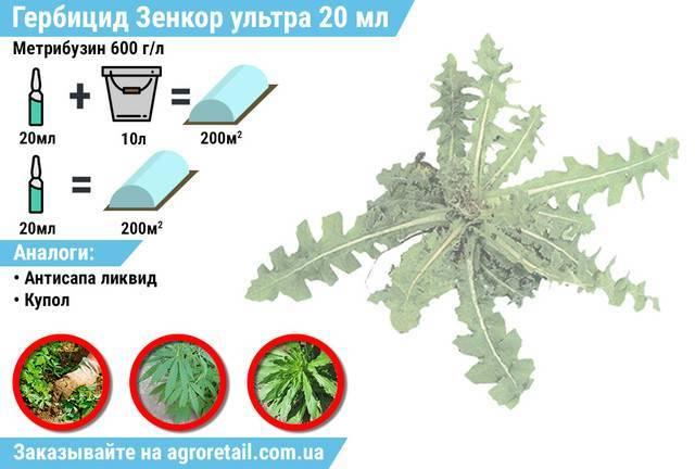 Гербицид «зенкор» от сорняков: инструкция по применению на картофеле