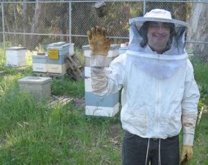 Препарат бипин для пчел: дозы и способ применения - общая информация - 2020