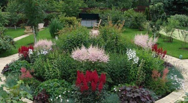 Как создать клумбу непрерывного цветения: всесезонный цветник в схемах и примерах