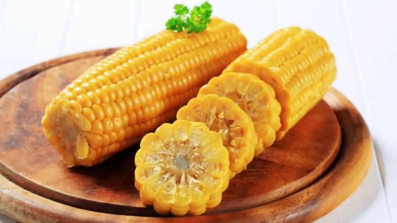 Чем полезна кукуруза: целебные свойства золотых початков