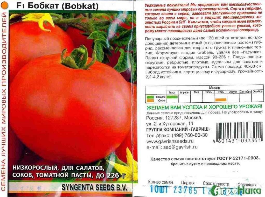 Почему каждому огороднику стоит хоть раз вырастить томат «бобкат» – лучший из низкорослых