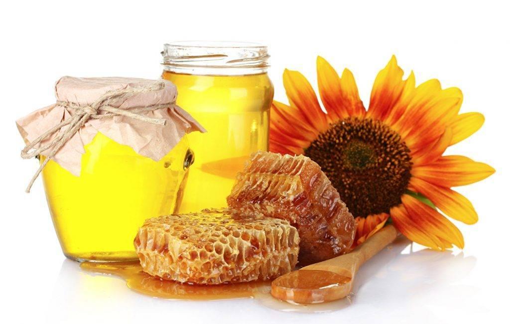Польза и вред подсолнечного меда