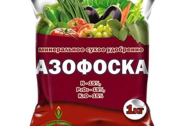 Подкормка томатов азофоской