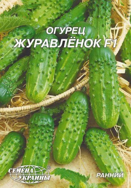 Описание сорта огурца журавленок f1, его характеристика и урожайность