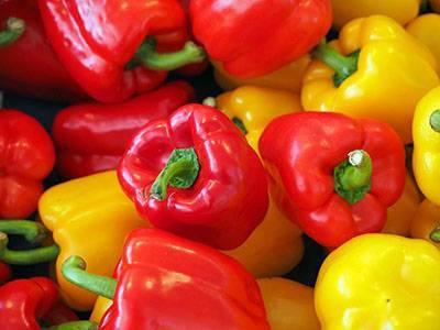 Лучшие урожайные сорта перца для выращивания в теплице