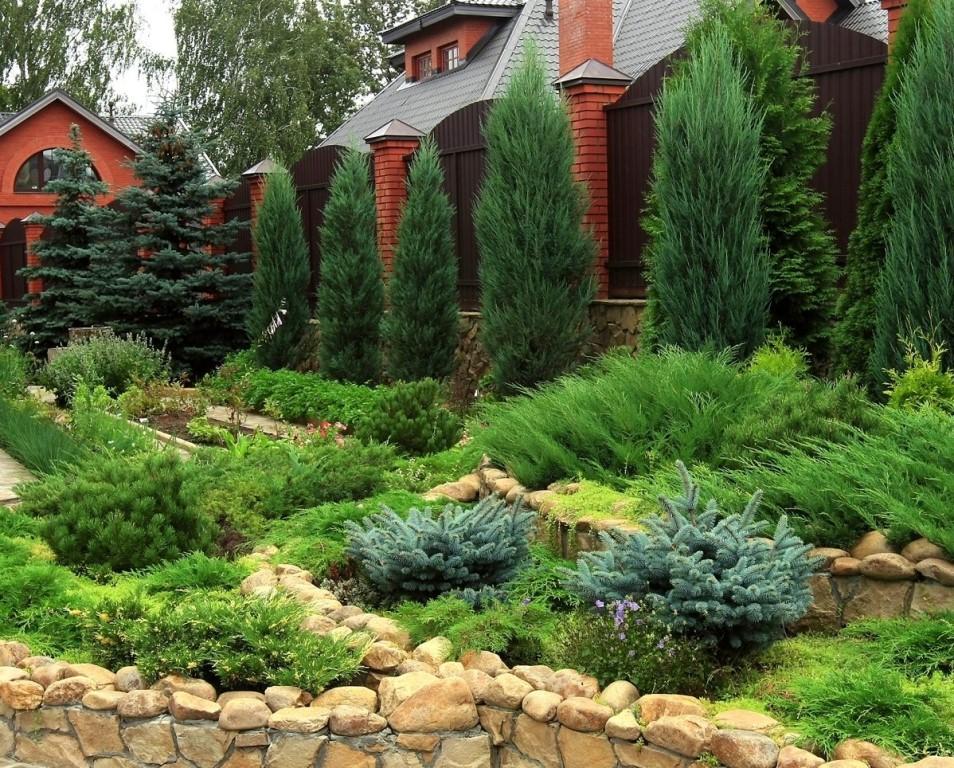 Дизайн заднего двора — лучшие идеи как оформить свой участок красиво и со вкусом, а также советы и рекомендации от профи (120 фото)