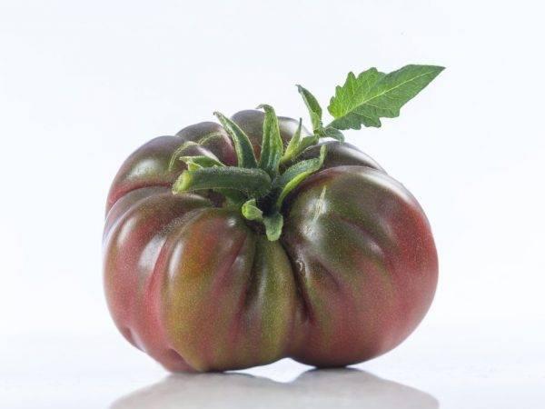 Томат черный мавр: описание, нюансы выращивания