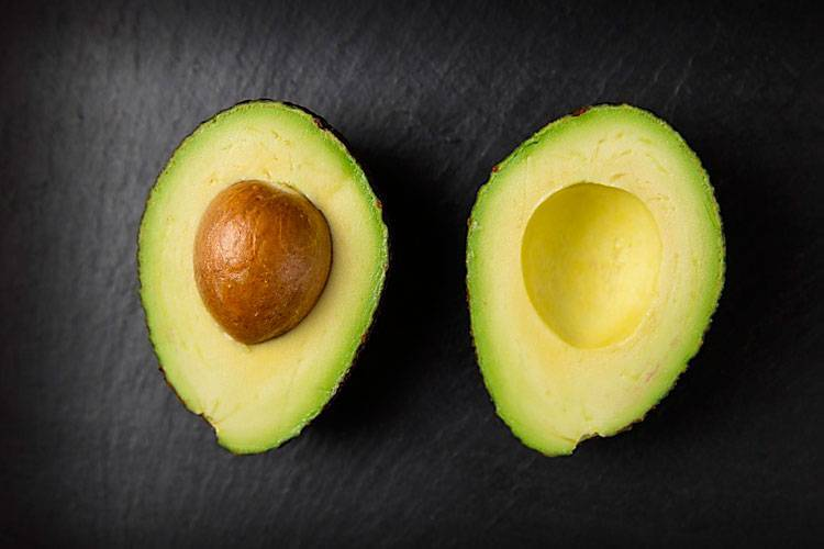 О уходе и выращивании растения авокадо в домашних условиях: полив и прищипывание