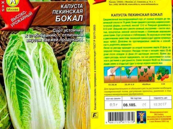 Как сажать пекинскую капусту