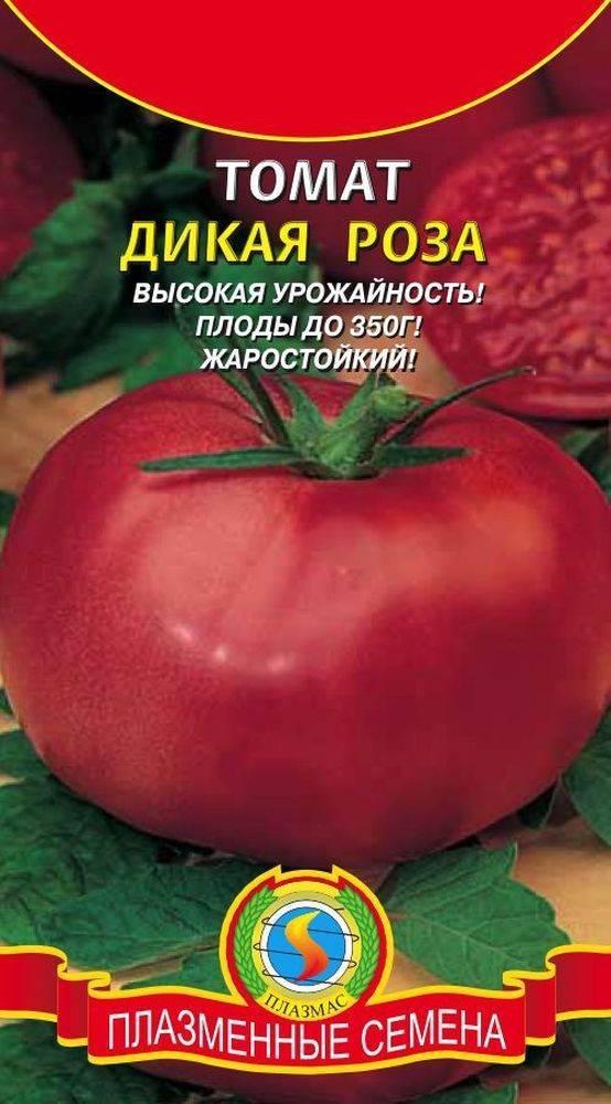 Дикая роза: описание сорта томата, характеристики помидоров, посев