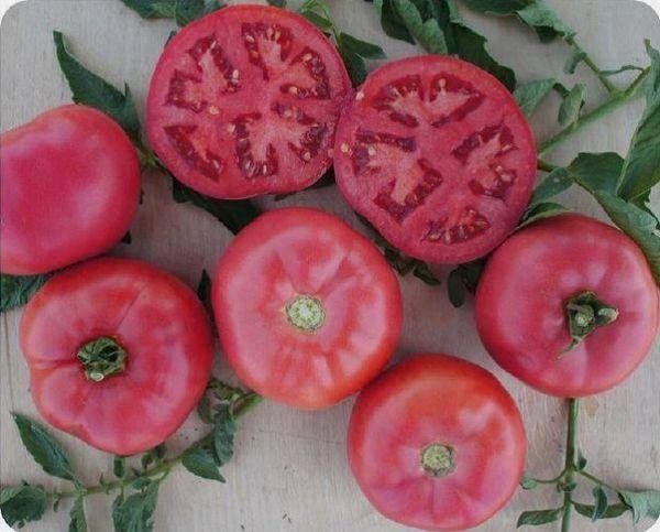 Сорта розовых томатов: фото, описание, отзывы