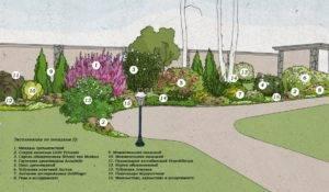 Миксбордер (91 фото): что это и как создать из многолетников, подбор растений и схемы посадки, как сделать ландшафтный дизайн своими руками