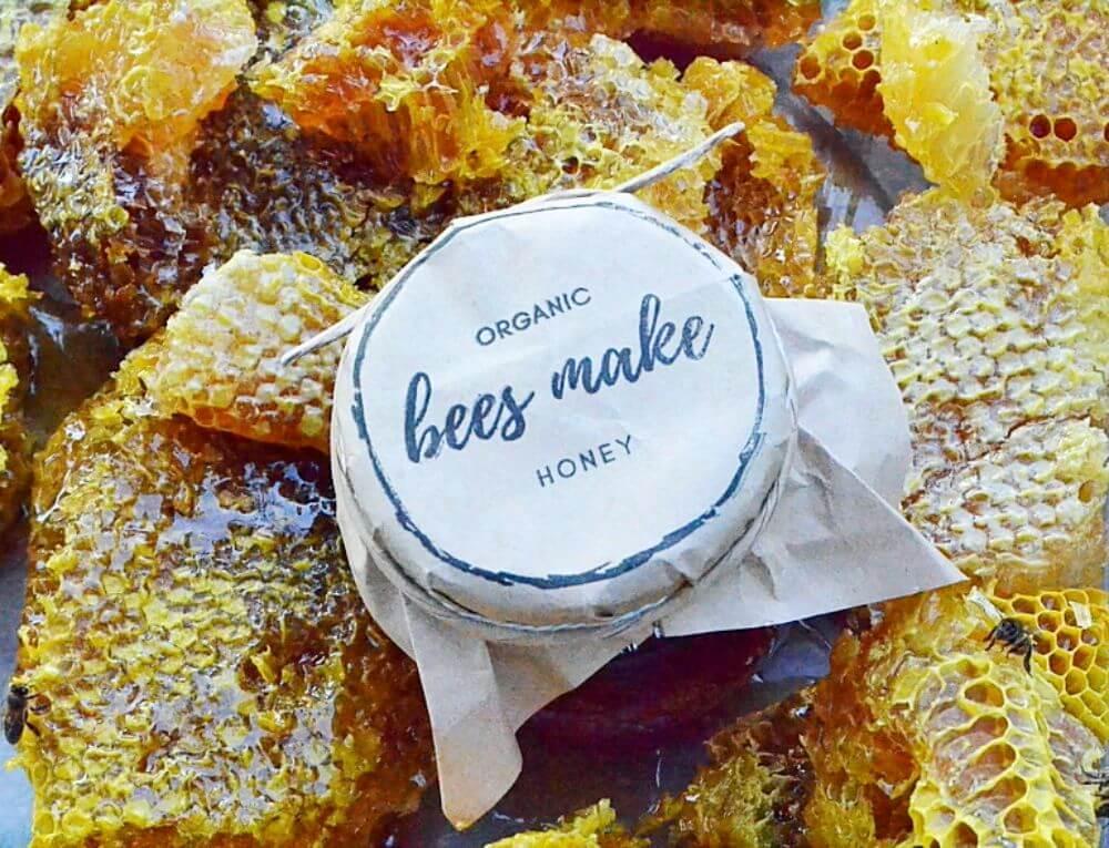 Бортевое пчеловодство — википедия. что такое бортевое пчеловодство
