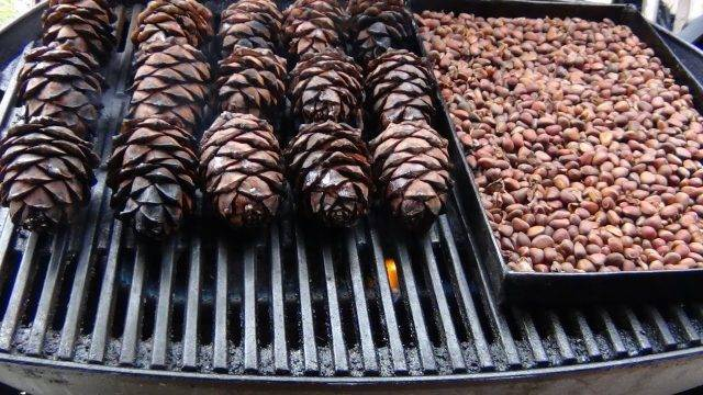 8 лучших рецептов настойки кедровых орешков на спирту: для застолья и лечения