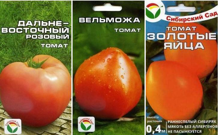 Выбираем низкорослые сорта помидоров