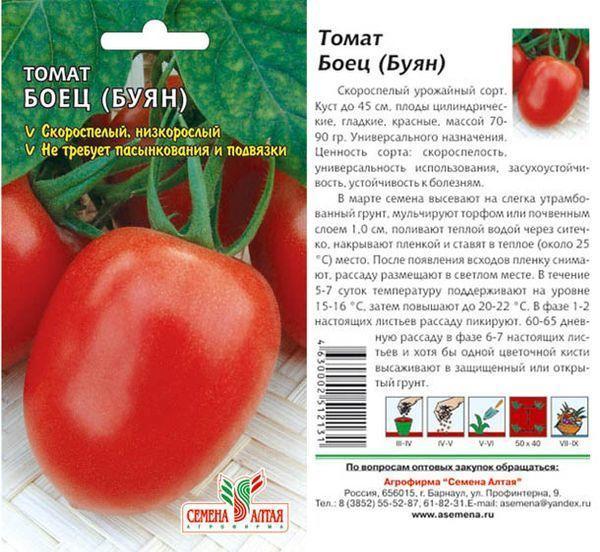 Лучшие сорта низкорослых помидор