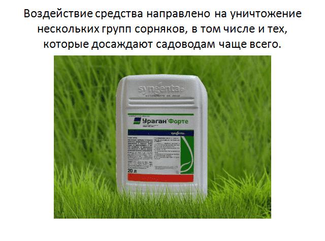 Способ и преимущества применения гербицида ураган