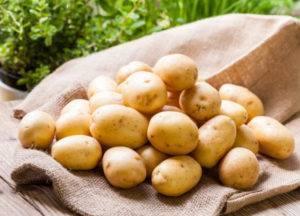 Фитофтора на картошке и самые эффективные методы борьбы с ней