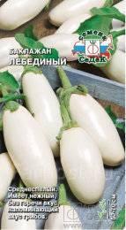 Белые баклажаны выращивание и уход