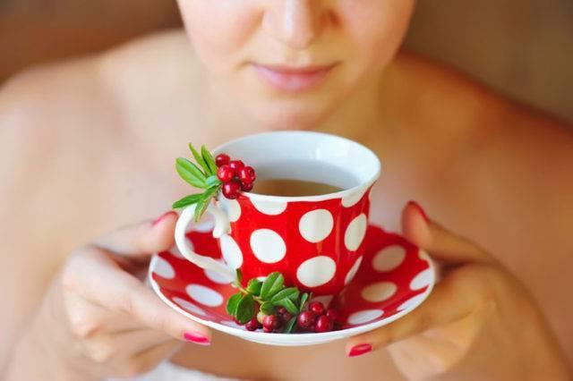 Брусника во время грудного кормления: какая польза?