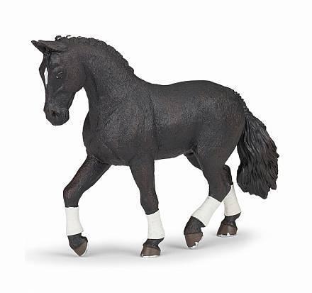 Основные характеристики ганноверской лошади
